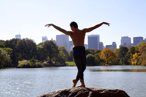Anatomy of a Male Ballet Dancer 1