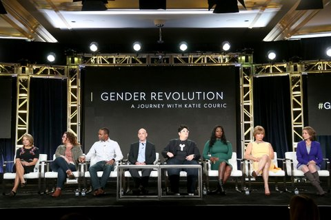 PASADENA, CA - JANUARY 13:  (L-R) Host Katie Couric, Vanessa Ford, JR Ford, Joshua Safer, M.D., Georgiann Davis, PH.D., Sabel Samone-Loreca, Michaela Mendelsohn and Susan Goldberg, Editor in Chief of National Geographic Magazine, of the series 'Gender Revolution: A Journey With Katie Couric' speak onstage during the National Geographic portion of the 2017 Winter Television Critics Association Press Tour at the Langham Hotel on January 13, 2017 in Pasadena, California.  (Photo by Frederick M. Brown/Getty Images)