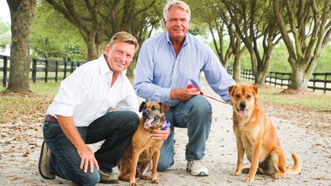 At home Gay couple in the park with their pet